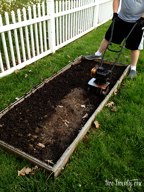 preparing a vegetable garden