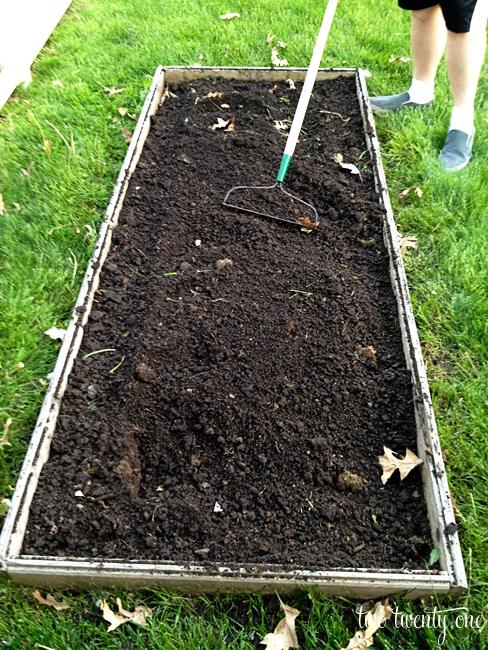 prepping a vegetable garden