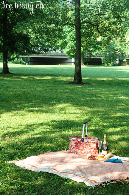 anniversary picnic