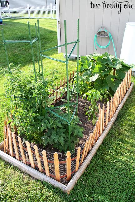 garden update june 2013