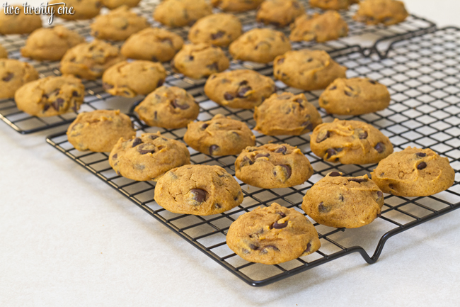 Pumpkin Chocolate Chip Cookie Recipe Using Spice Cake Mix