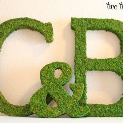 Moss Covered Initials Tutorial {Monograms}