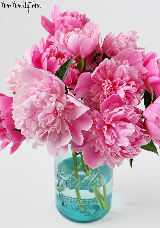 fresh cut peonies