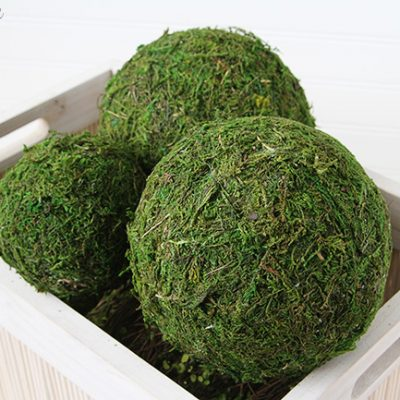 How to Make Moss Covered Balls