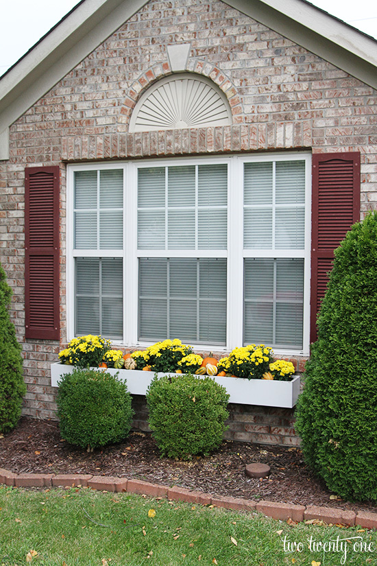 fall flower window box