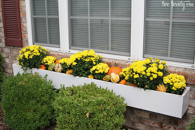 fall window box decor