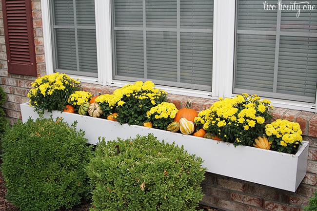 fall window box decor