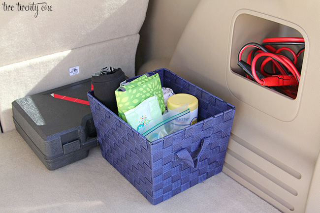 how to keep spiders out of my car