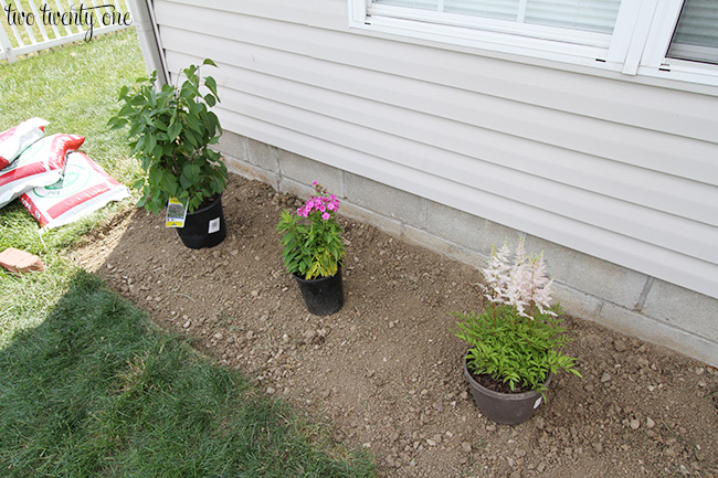 Planting New Flowerbed