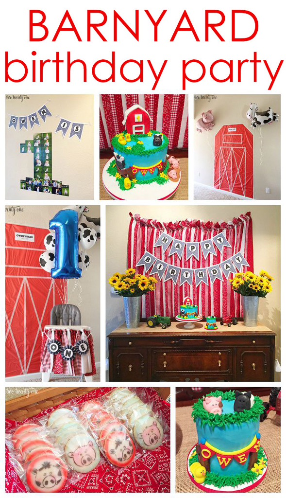 Super cute barnyard birthday party!