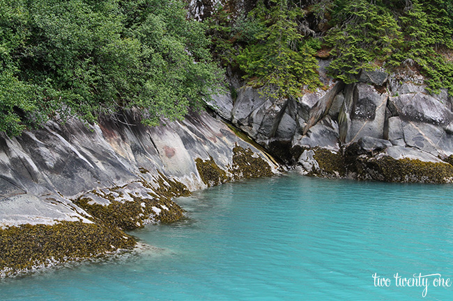 tracy arm fjord 1