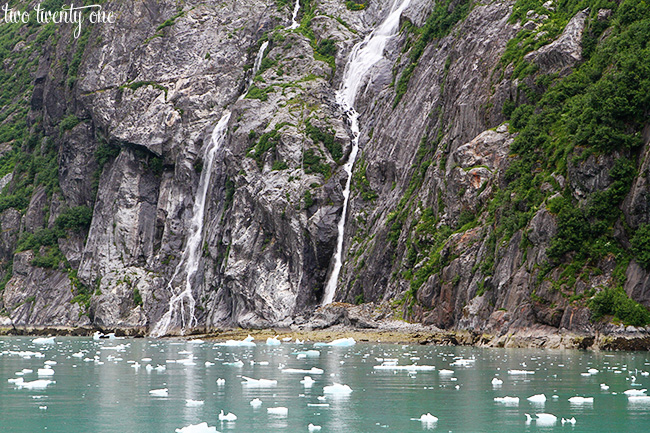 tracy arm fjord 6