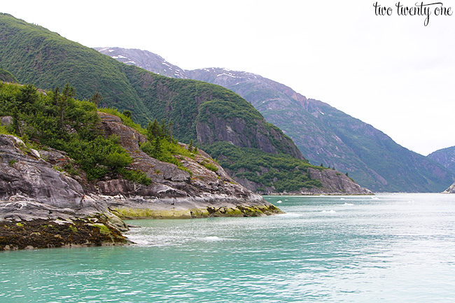 tracy arm fjord 9