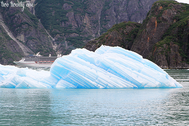 tracy arm fjord carnival
