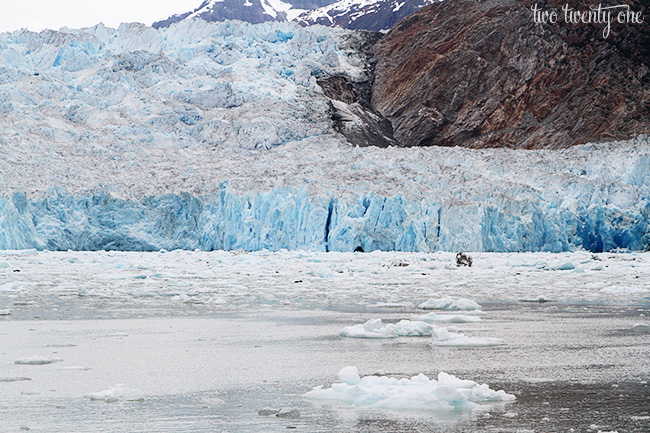 sawyer glacier 2