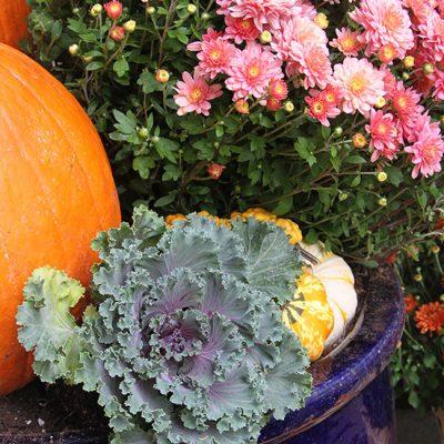 Fall Outdoor Decor 2015