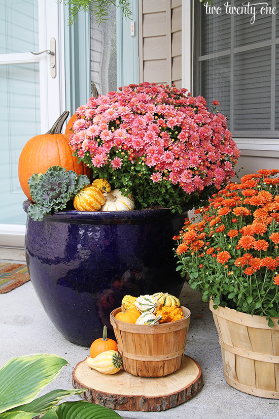 mum and pumpkin fall display