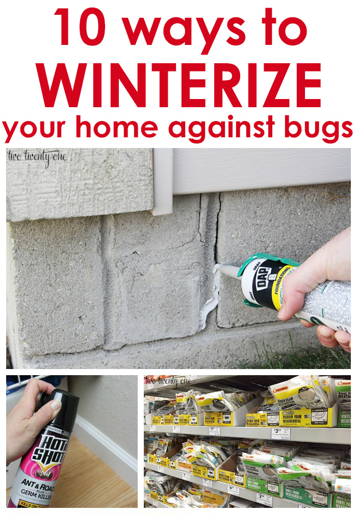 10 ways to winterize your home against bugs! Great tips!