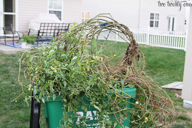 remove vegetation