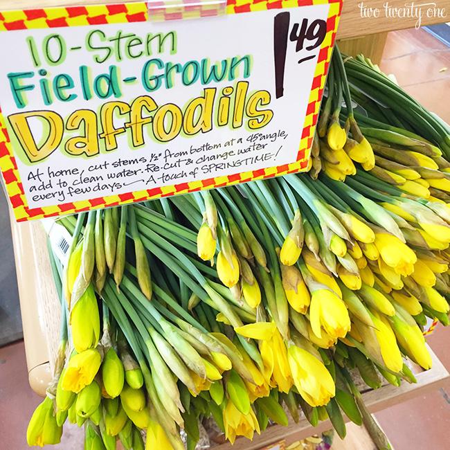 trader joe's daffodils