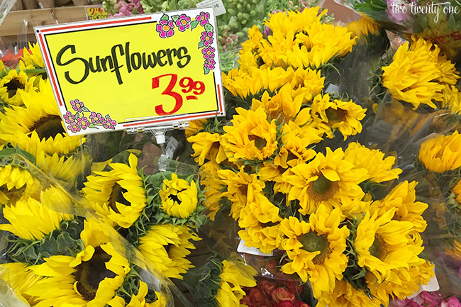 trader joe's sunflowers