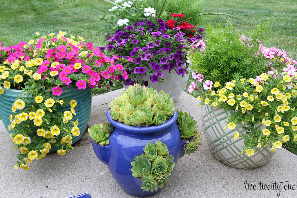 flower-planters