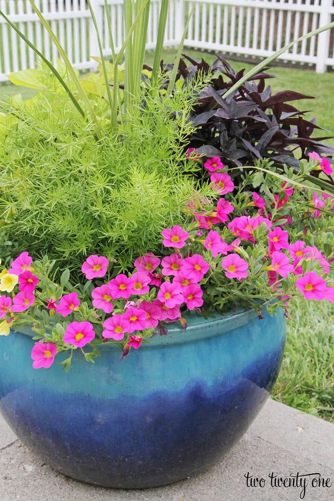 mixed-planter