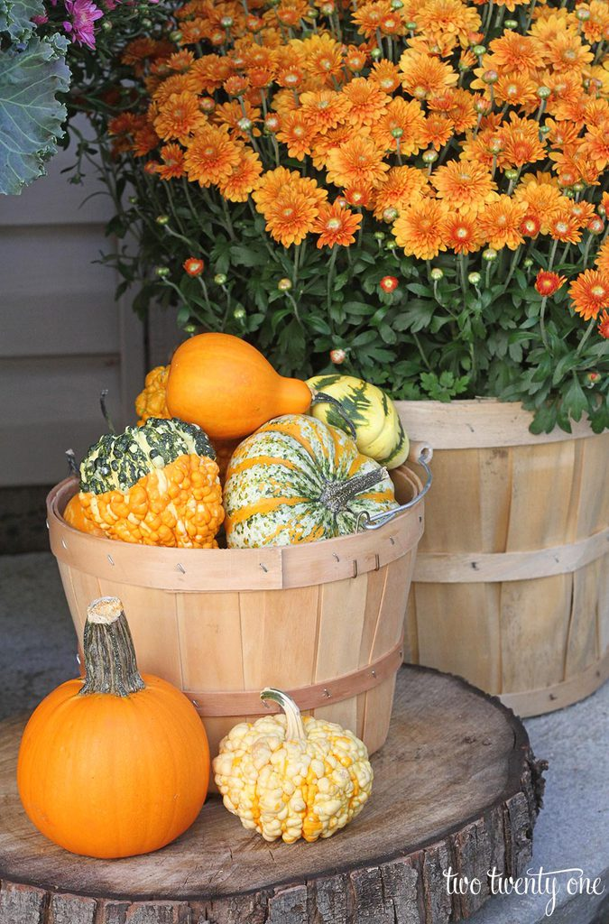 fall-pumpkin-decorations