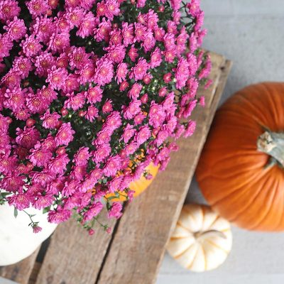 Fall Front Porch & A Little DIY