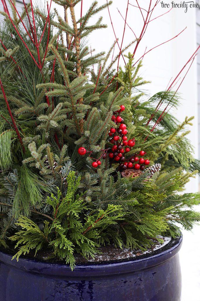 christmas planter with fresh greens