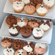 puppy face cupcakes