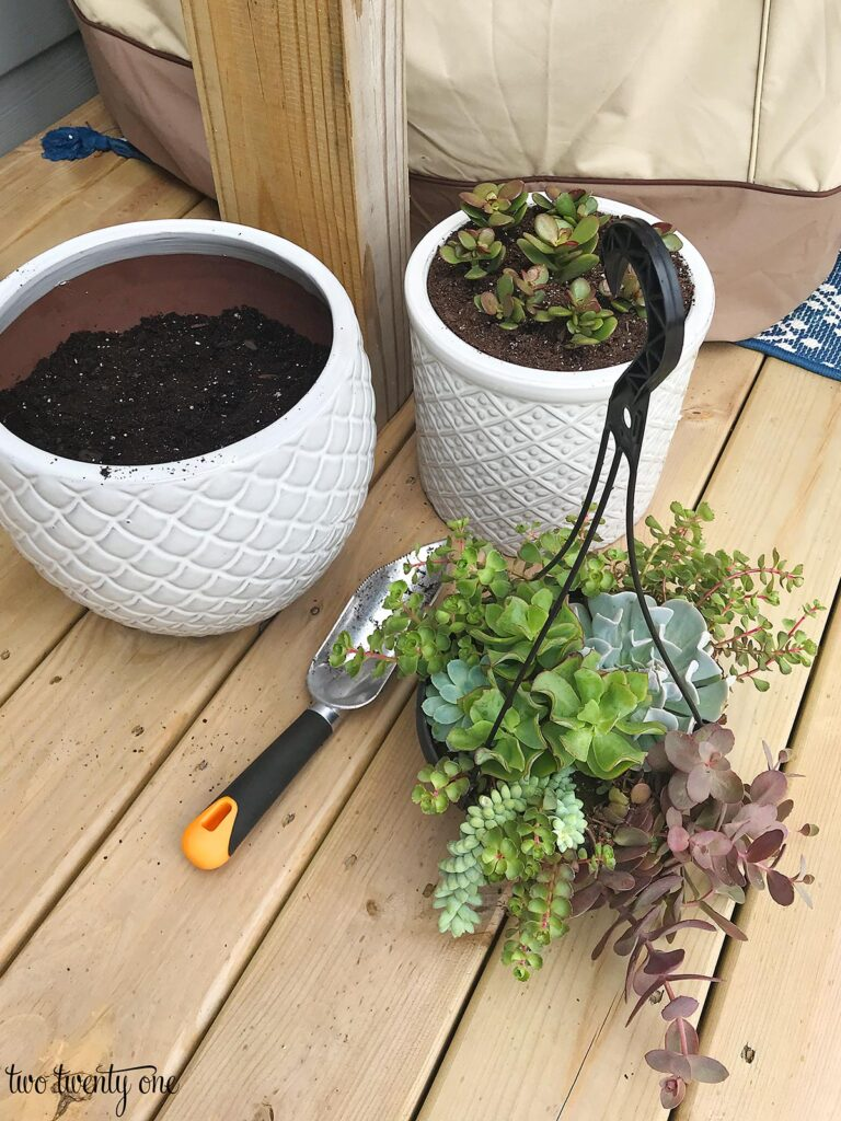 two white planters and a hanging basket of succulents