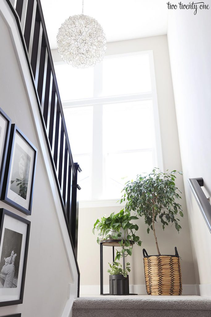 stairway with windows