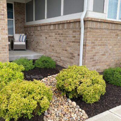Dry Creek Bed Landscaping – DIY Rainscaping