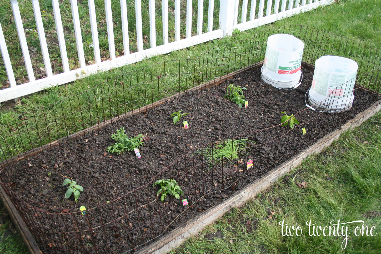 Weekend gardening for Watering vegetable garden